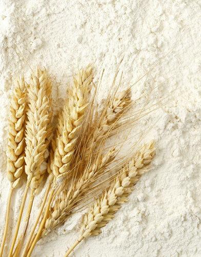 Prejelatinize Buğday Unu